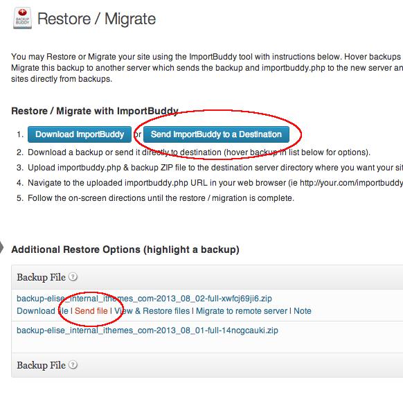 BackupBuddy: Manual Migration