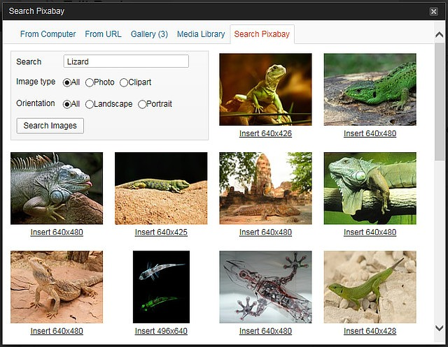 Extended - Pixabay Image Search Module